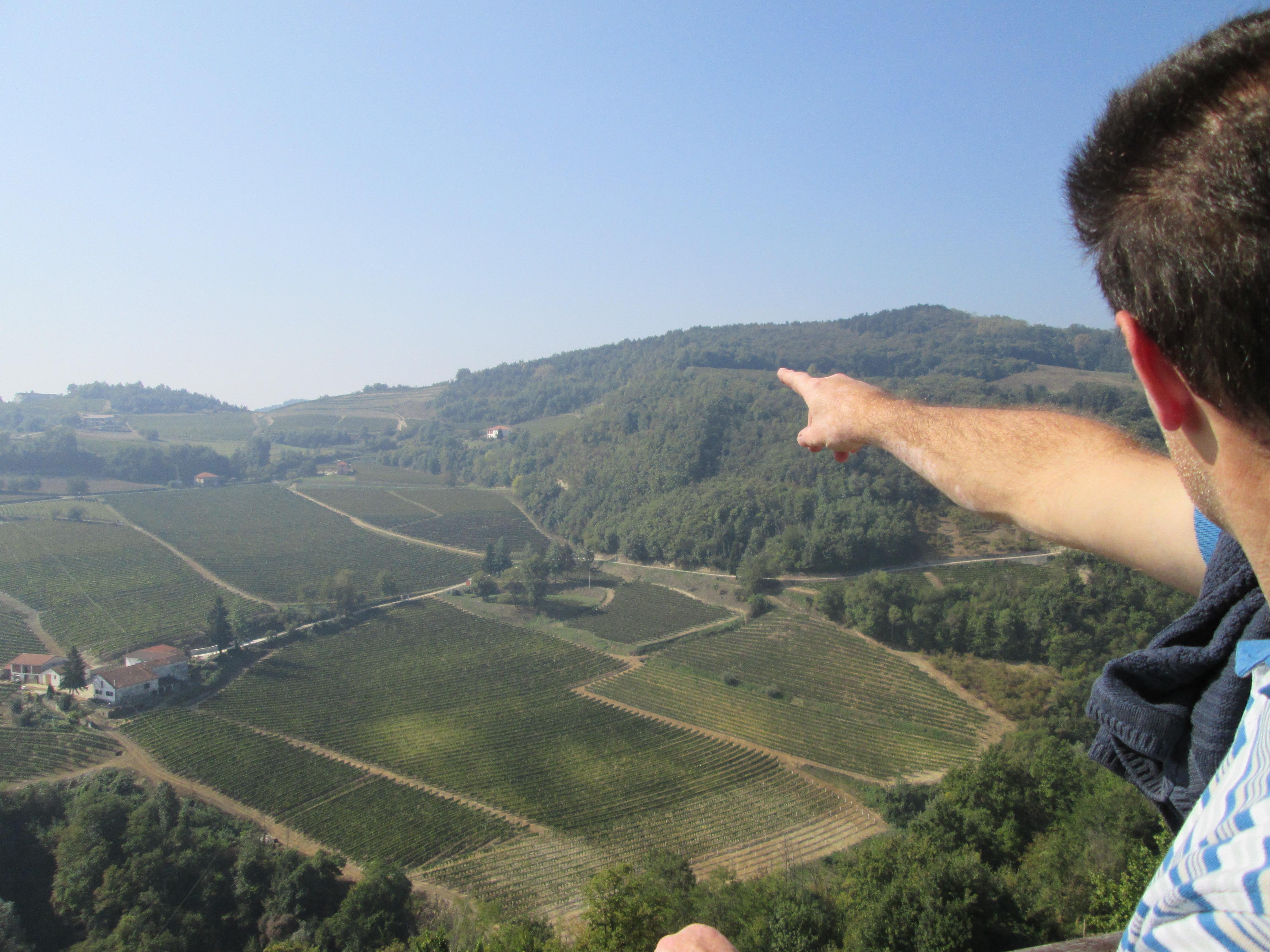 Le vigne di Loazzolo