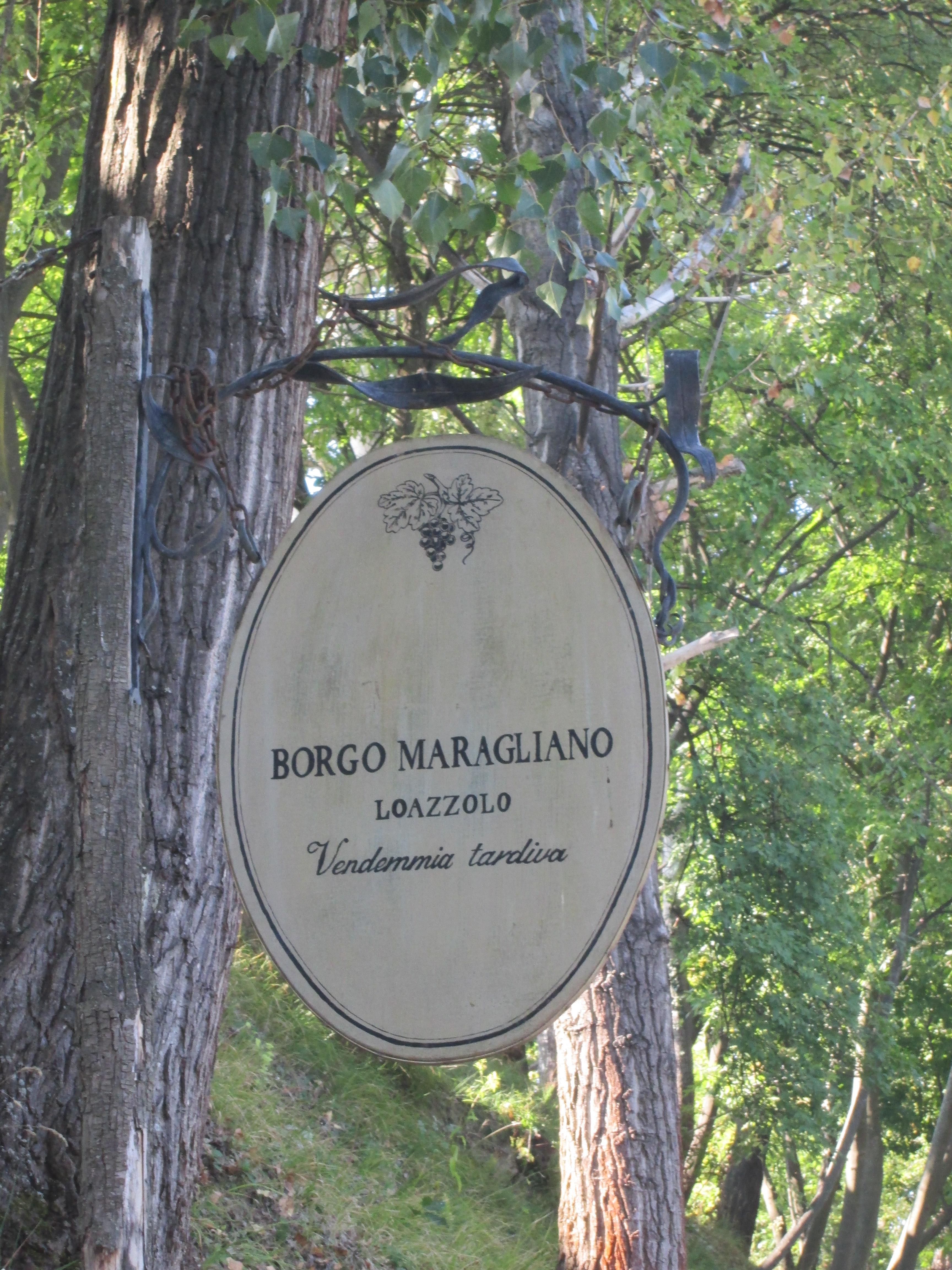 Azienda Borgo Maragliano in Loazzolo