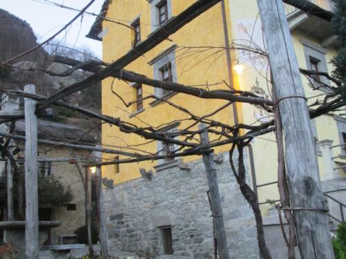 Il Prünent della Val d'Ossola: un Nebbiolo raro e antico.